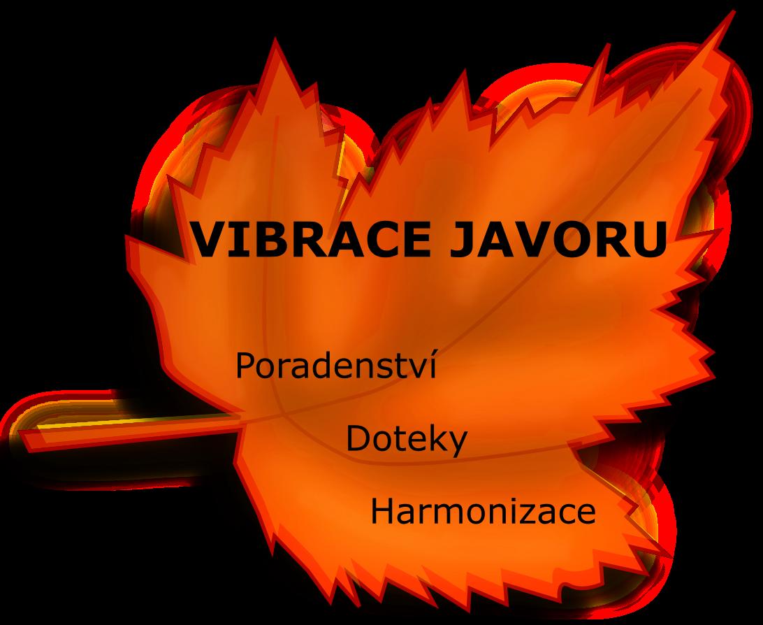Vibrace javoru
